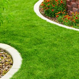 Landscaping work that has been completed by our processionals
